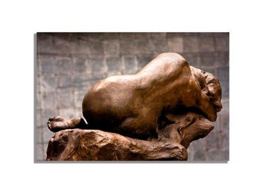 Foto de espalda de bronce